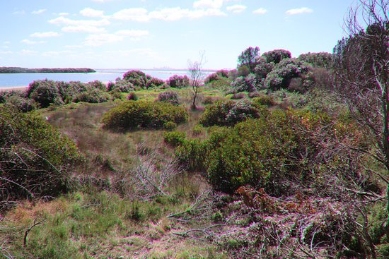 Towra Point Nature Reserve