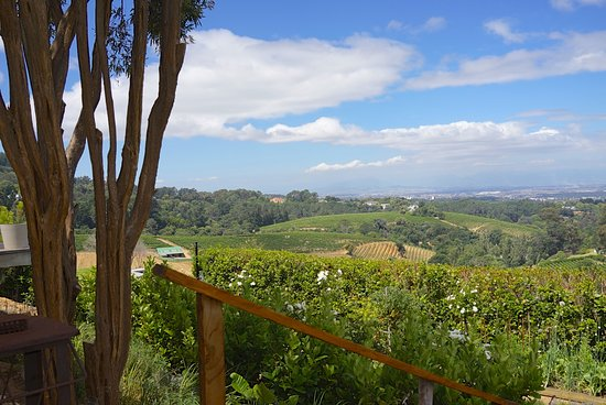 Constantia, South Africa: View from restaurant 1