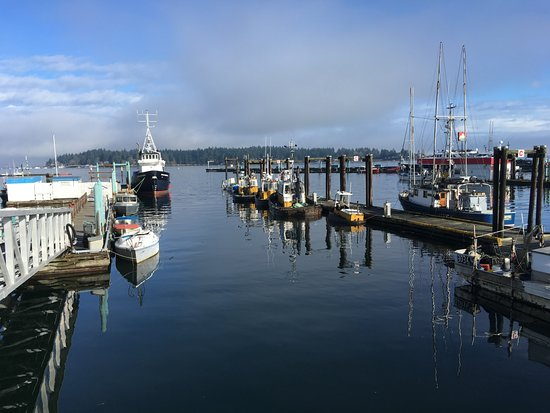 Nanaimo, Canada: Part of the harbour