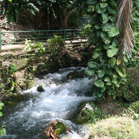 Saint James Parish, Jamaica: AJ's Islandwide Tours
