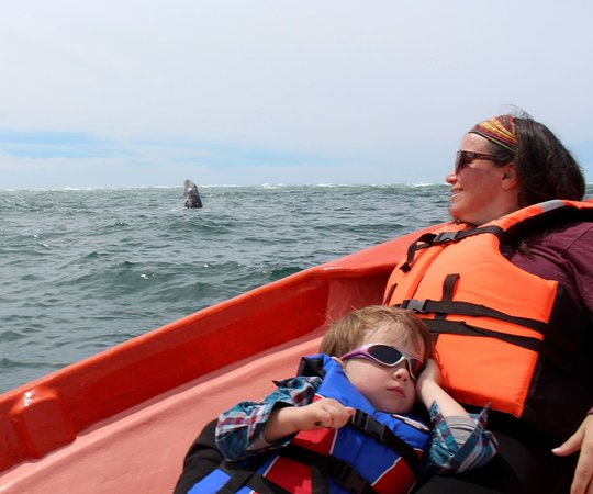 Fun Baja Whale Watching: Baby whale caught jumping with Bernadette and Baby Oliver....who loved it,, but missed seeing th