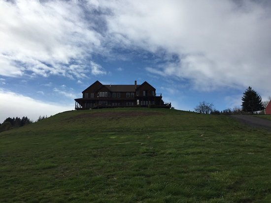 Youngberg Hill: Home on the Hill