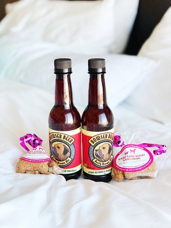 The Westin Austin Downtown: Treats and dog root beer for our puppies.