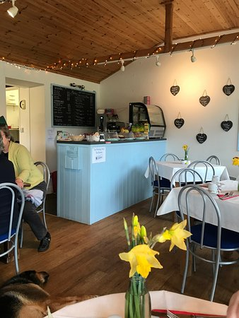Wilmington, UK: Inside tearoom with our dog :)