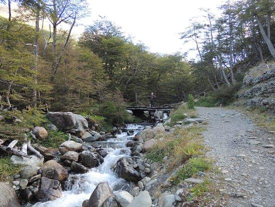 Province of Tierra del Fuego, Argentina: Trilha para o Glaciar