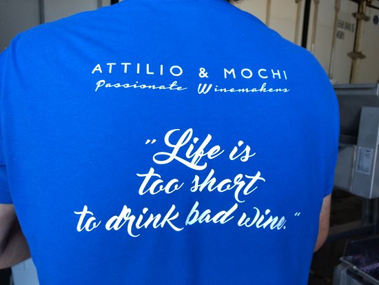 Attilio & Mochi - Passionate Winemakers