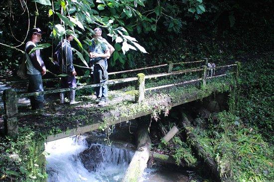 Dipartimento di Risaralda, Colombia: Puente sobre quebrada el Silencio