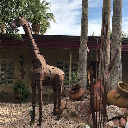 Desert Paradise Gay Men's Resort: photo1.jpg
