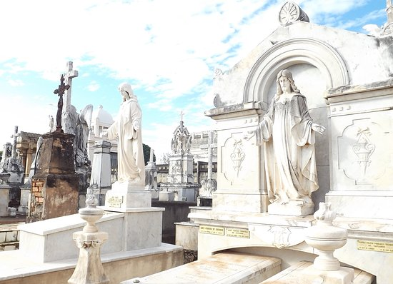 Campinas, SP: Interior do cemitério.