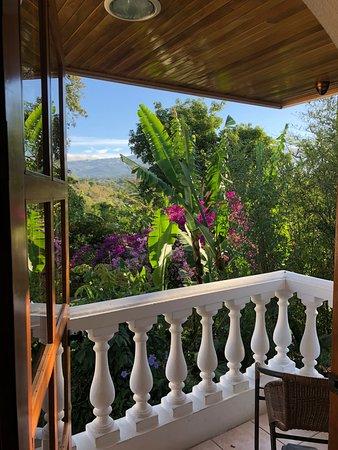 Hotel Buena Vista: Balcony View