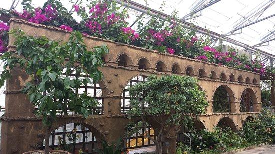 Royal Botanical Gardens: Inside the greenhouse