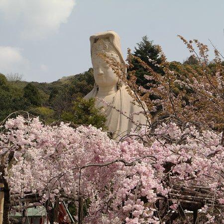 Ryozen Kannon - Billede af Ryozen Kannon, Kyoto - TripAdvisor