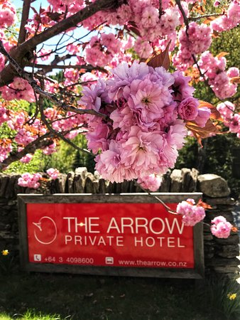 The Arrow Private Hotel : Arriving at The Arrow