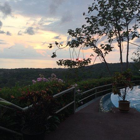 Vista Ballena Hotel : photo1.jpg