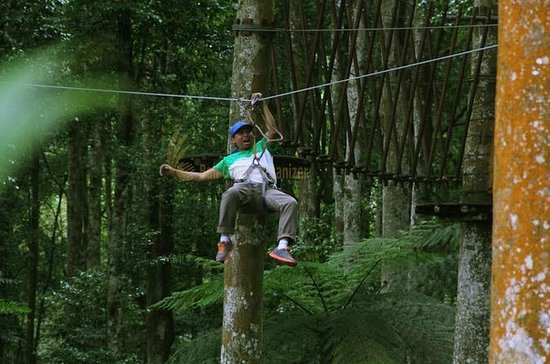 Bali Treetop Adventure Park Tour
