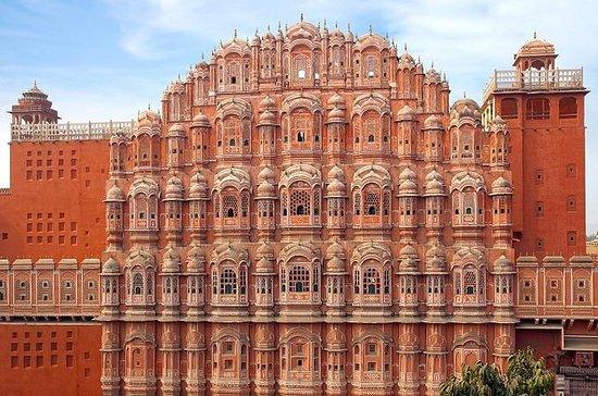 Jaipur Private Full-Day Tour from Delhi