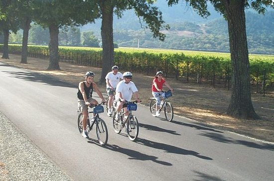 Healdsburg Wine Country Bike and Wine Tasting Tour