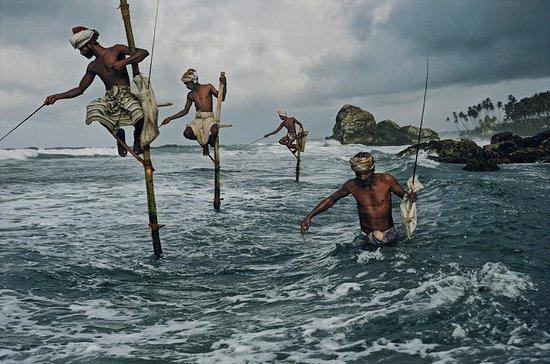 Village de pêche et tour Mangrove...