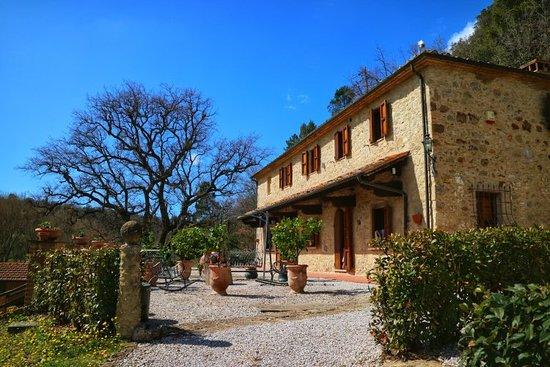Villa Loghino : 20180401132936_IMG_0179-01_large.jpg