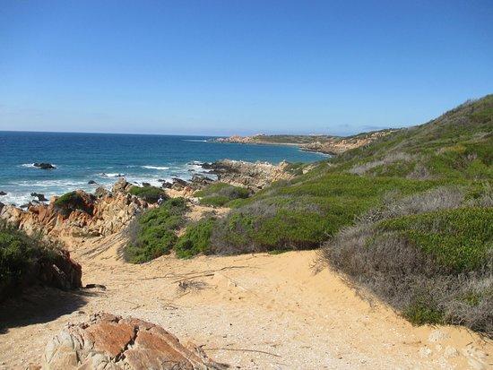 Boggomsbaai, South Africa: Day 3 Oystercatcher Trail