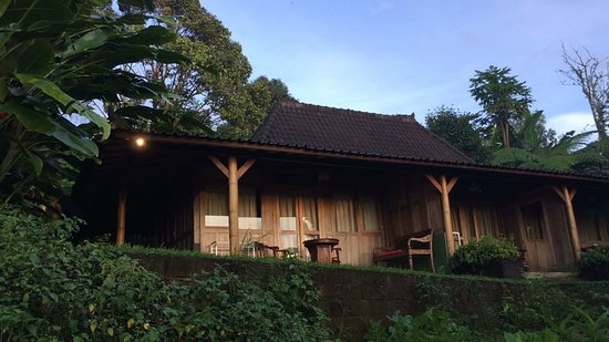Bali Mountain Retreat: Home away
