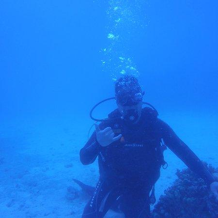 Oasis Palau: photo1.jpg