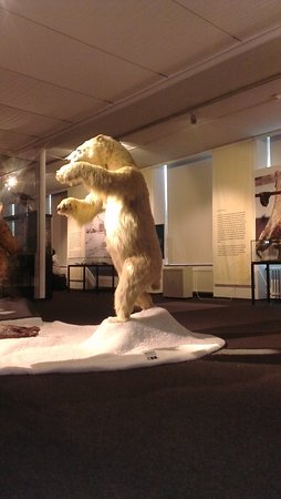 Landesmuseum Natur und Kunde