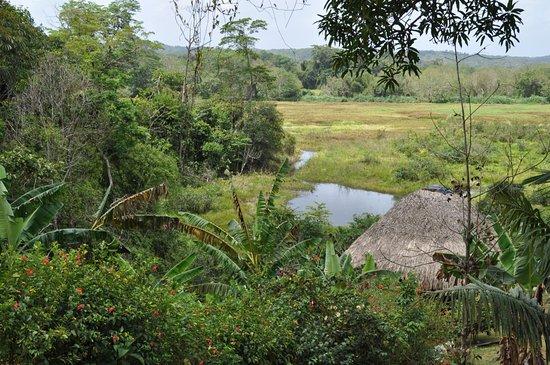 Nueva Gorgona, Panamá: Village Emberra