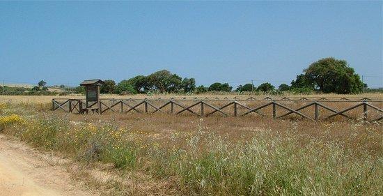 Sines, Portugal: Sítio arqueológico da Quitéria