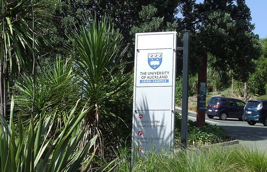 Leigh, New Zealand: Part of Auckland University Marine Science