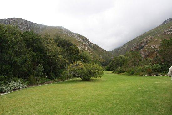 Harold Porter National Botanical Gardens: Blick auf den Hügel