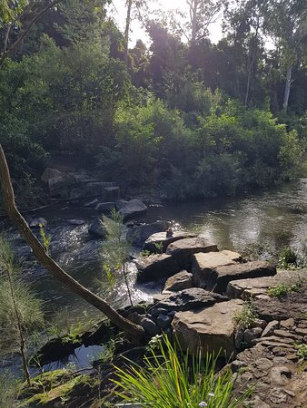 Queensland, Australia: 20180331_160150_large.jpg