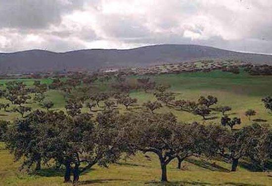 Grandola, Portugal: Serra de Grândola