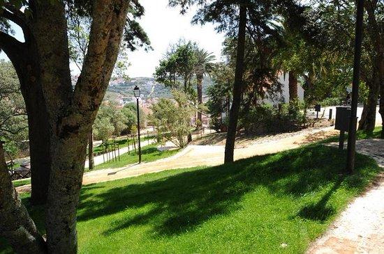 Jardim da Tapada do Palacio dos Conde de Avillez