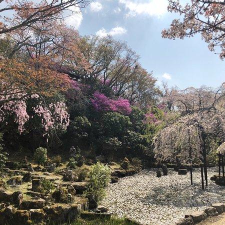 竹林院 群芳園
