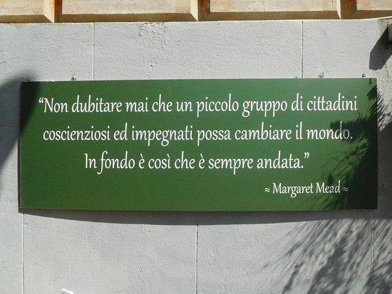 La Bella Frase Di Margaret Mead Sul Senso Della Vita Picture Of