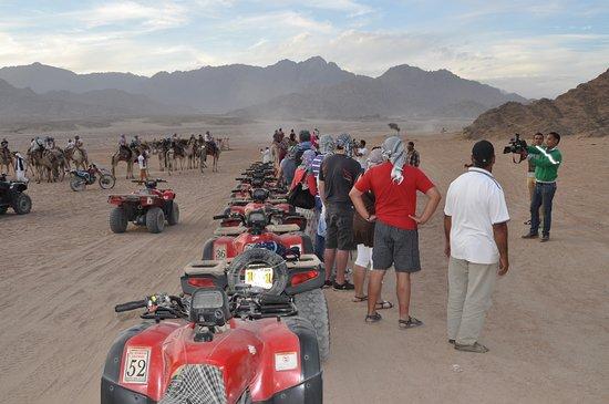 El Sherif Safari: رحلة مع الأصدقاء