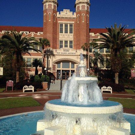 Florida State University: photo2.jpg