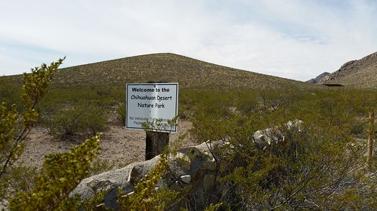 Chihuahuan Desert Nature Park: Welcome sign at gravel trail