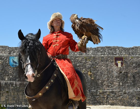 Aigles à Provins - photo Stéphanie Danis