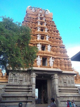 Nanjangud, الهند: inside view of gopuram