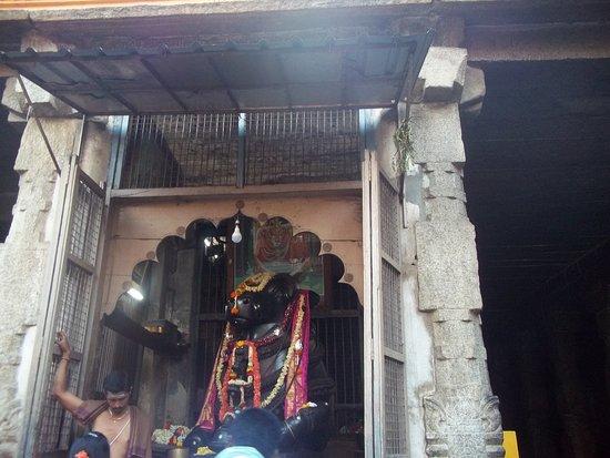 Nanjangud, الهند: big nandi statue within temple
