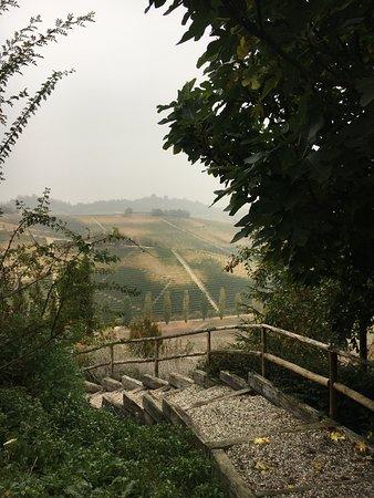 Grazzano Badoglio, Italia: passeggiata nella tenuta
