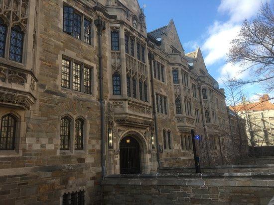 davenport college ニュー ヘブン yale universityの写真 トリップ