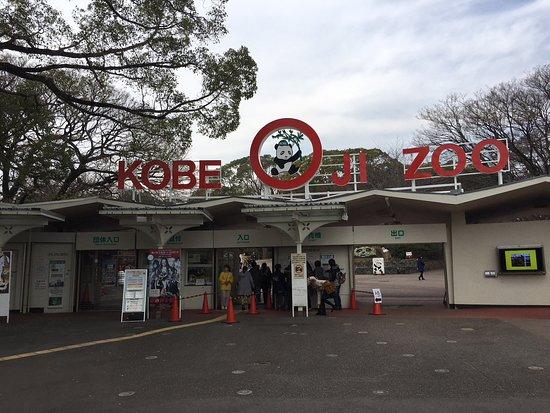 Kobe City Oji Zoo : 入り口からパンダです。