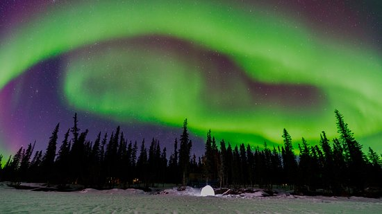 Blachford Lake Lodge: Aurora display over an igloo on frozen-over Blachford Lake