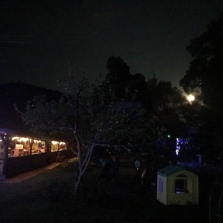 Cabanas el Refugio照片