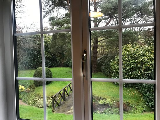Fairlight, UK: The Bluebell Room - beautiful view