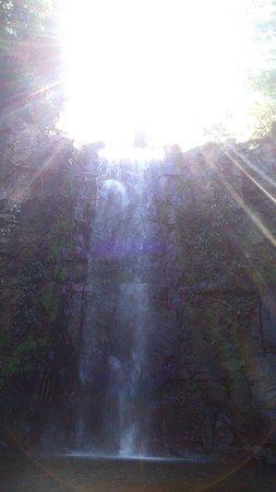 Barra do Garcas, MT: Cachoeira da Serra verde