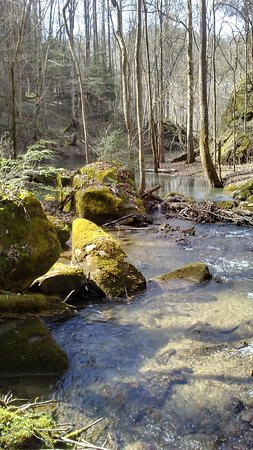 Whitley City, KY: A walk along the creek bed